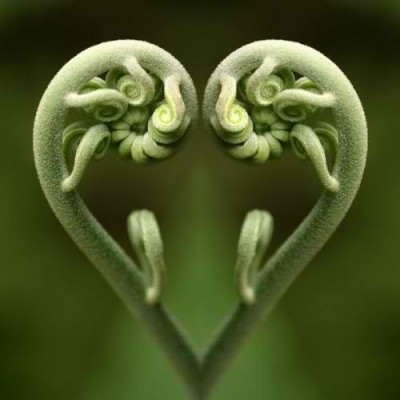 It is in our Nature to Love or rather its natural for us to love.