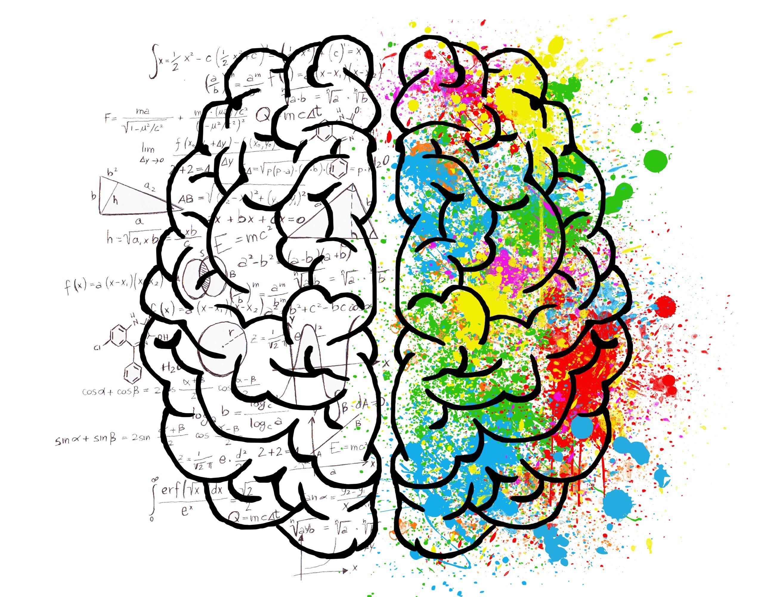 Amarantos PLRT in the light of Neuroscience